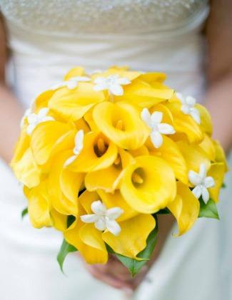 Yellow calla lilies with white stephanotis