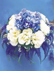 Stunning Blue Flowers surronded by white posies