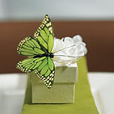 Butterfly Wedding Themes - Favors