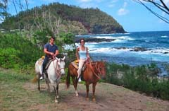 Horseback back riding while on Vacation in Hawaii
