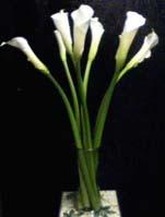 Beautiful picutre of  Calla Lily Wedding Invitations