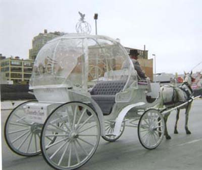 Cinderella Wedding Ideas of a horse and carriage