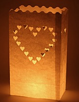 Halloween wedding ideas luminary bags