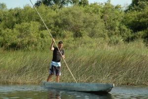 Honeymoon Island Water Activities
