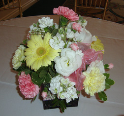 Ideas for inexpensive centerpieces