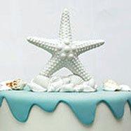 Beach theme wedding starfish cake topper.