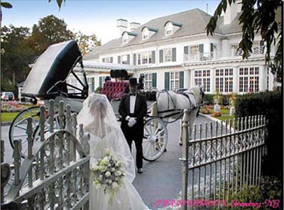 Cinderella theme wedding with a horse and carriage