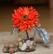 Ideas for inexpensive centerpieces single flower in a glass with rocks