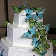 List of wedding themes in NJ wedding cake with butterflies