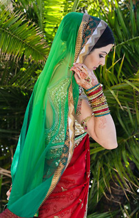 Indian Wedding Dresses Red Sari Picture