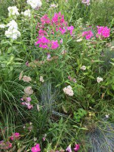 Wedding Ideas For Flowers - Garden Flowers
